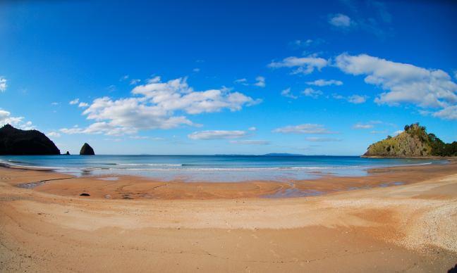 New_Chums_beach_Whangapoua_Waikato